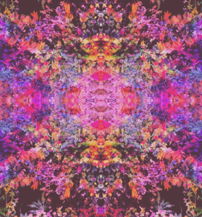 Psychedelic artist Olivia D'Orazi creates visuals in the for of prints and live rock and roll shows. Read the interview with the artist at Different Drum. differentdrumblog.com